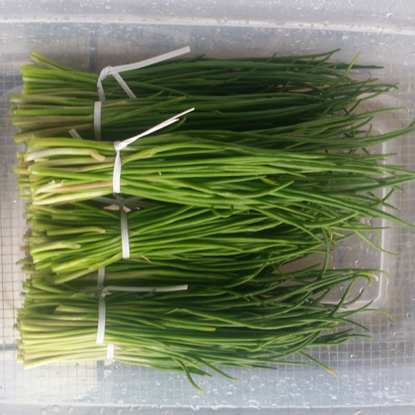 CCP Herbs - Chives, 1 bunch