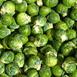 PGF Brussels sprouts, pint