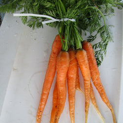 CCP Carrots, 1 bunch