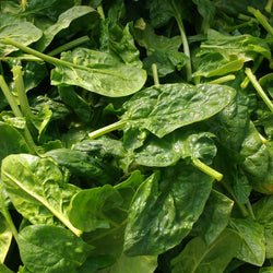 HHHa Spinach, various