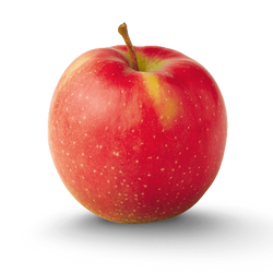 PKO Apples - Jonagold Red, 5 lbs