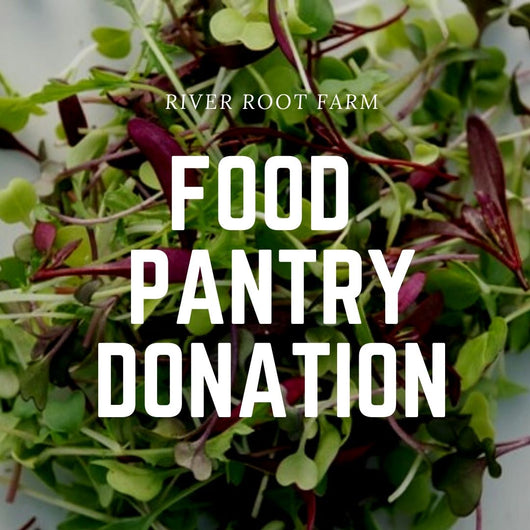 RRF Food Pantry Donation