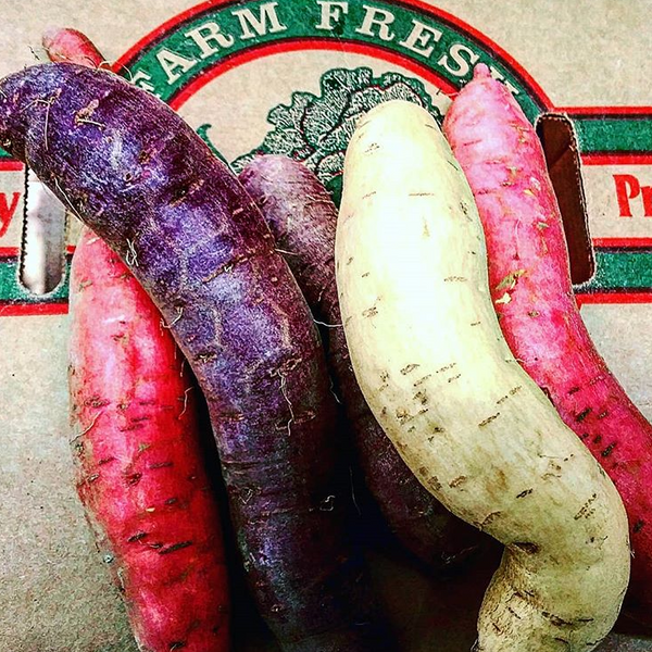 IFH Sweet potatoes - purple, 3 lbs