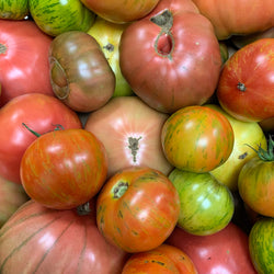 RRF Tomatoes, Asst Heirloom - 3 ct