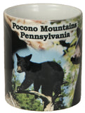 Pocono Mountains Coffee Mug
