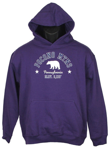 Youth Pocono Mountain Hoodie with Pocono Mountains Black Bear Star