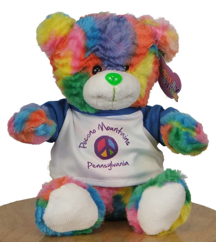 Pocono Mountains Tie-Dye Teddy Bear