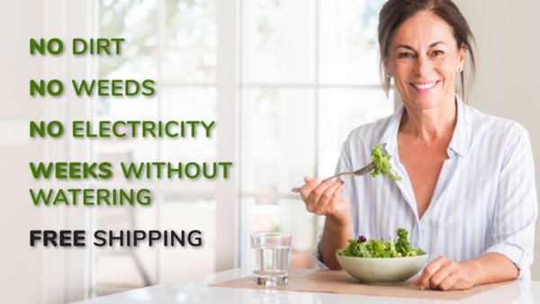 NO DIRT, NO WEEDS, NO ELECTRICITY, WEEKS WITHOUT WATERING, FREE SHIPPING