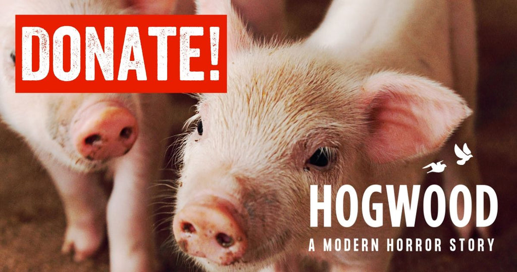 Viva Vegan Charity Hogwood: a modern horror story
