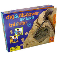 Discovery Kit - Fossil Trilobite