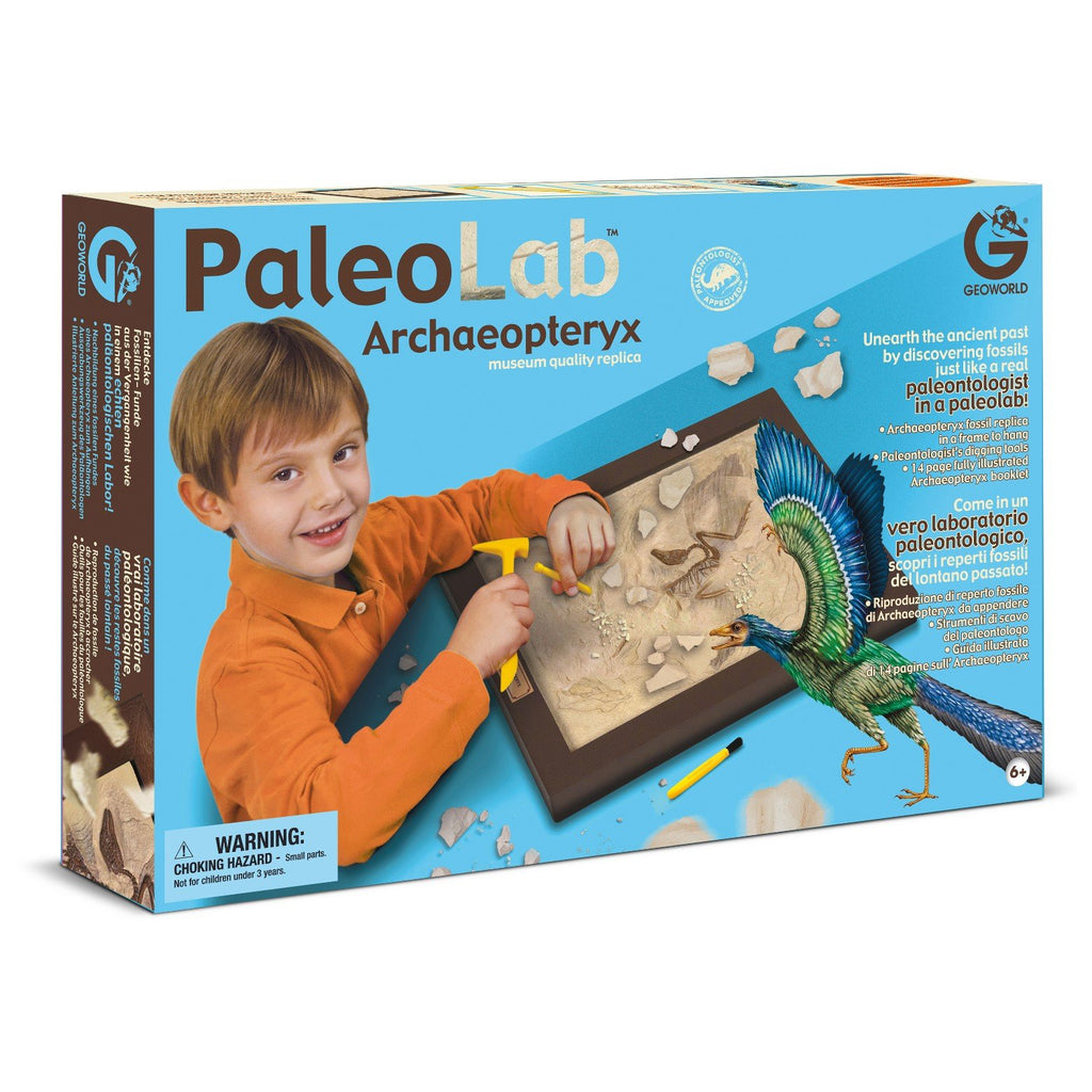 Paleo Lab Excavation Kit - Archaeopteryx