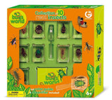 Dr Steve Hunters - Collection of 10 Real Insects