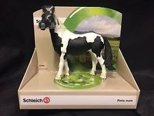 Schleich World Of Nature: Pinto Mare