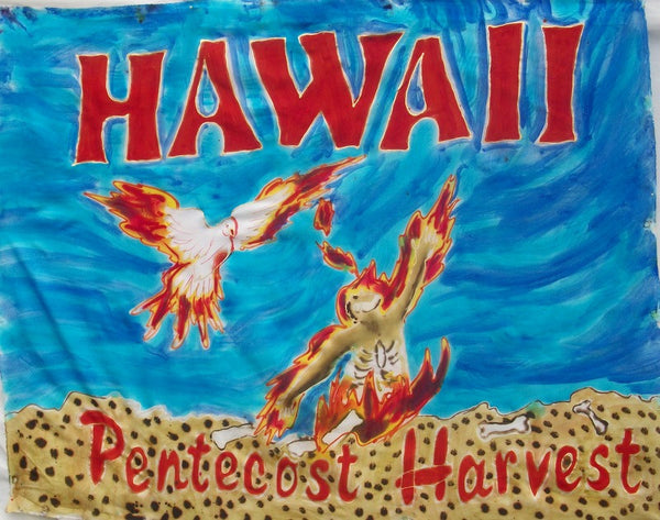 Hawaii Prophetic Destiny Flag
