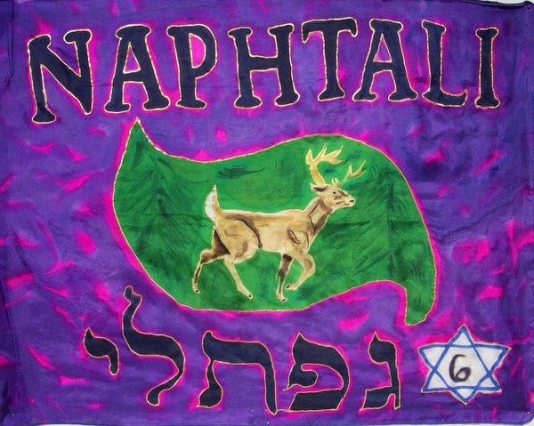 Naphtali Prophetic Worship Flag