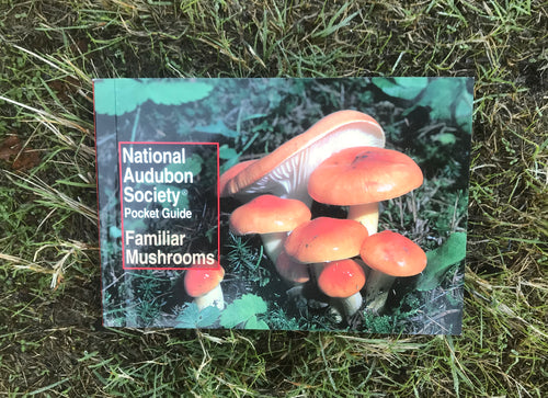 National Audubon Society Pocket Guide Familiar Mushrooms Book