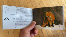 National Audubon Society Pocket Guide: Familiar Animal Tracks of North America Book