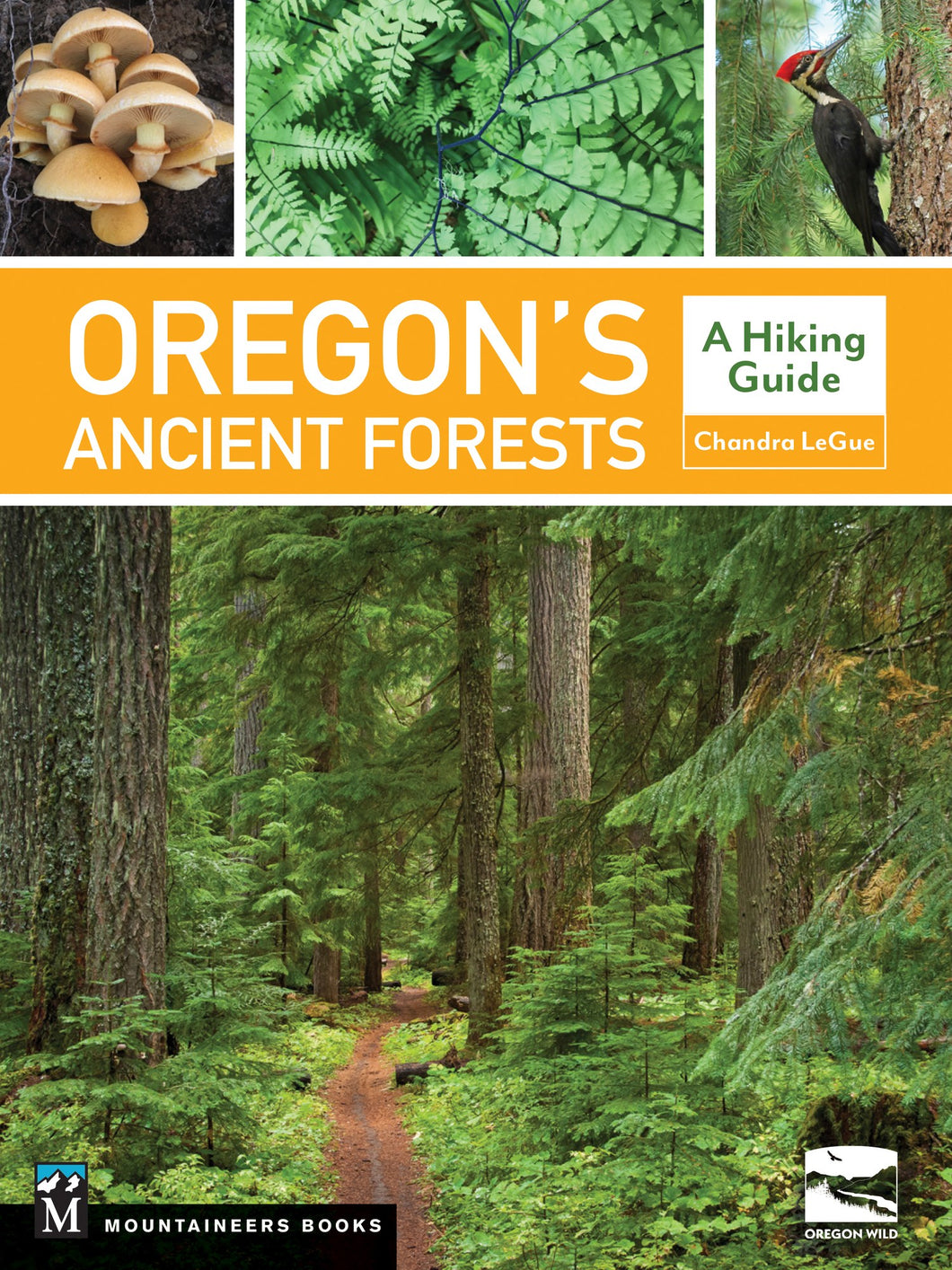 Oregon's Ancient Forests Book by by Chandra LeGue and Oregon Wild