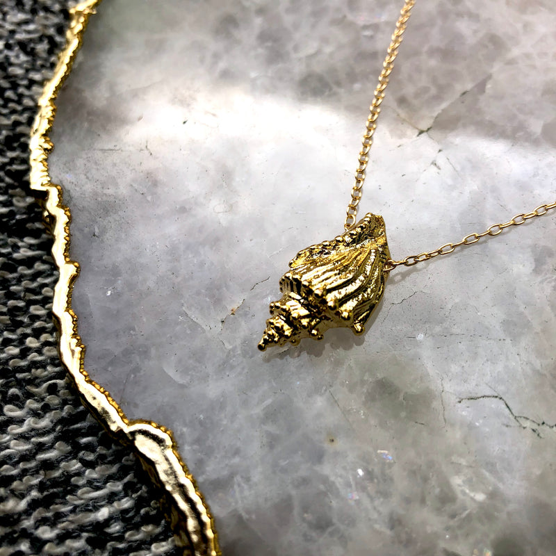 Treasure of the Sea Necklace