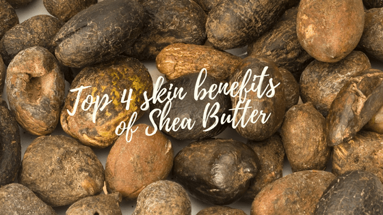 Top 4 Benefits of Shea Butter for Your Skin