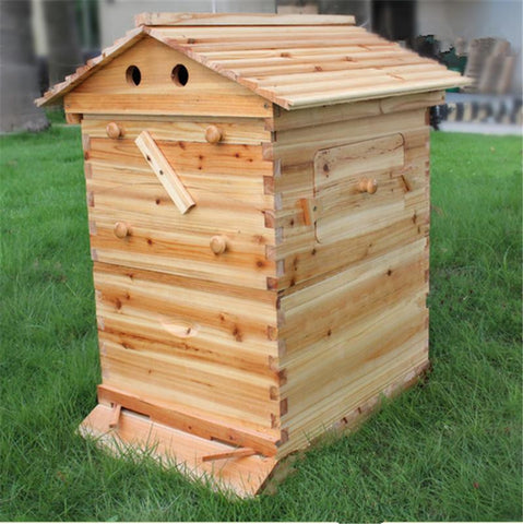 Automatic 7 frames langstroth bee flow hive and super supplier for sale
