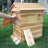 high quality honey flow bee hive with flow frames