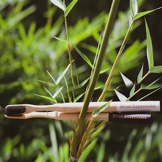 Load image into Gallery viewer, Bamboo Toothbrushes (Yin & Yang)