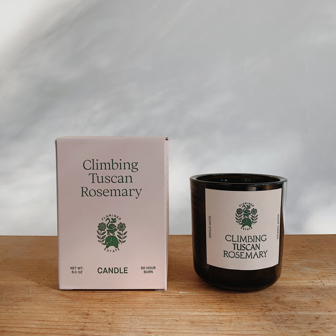 Climbing Tuscan rosemary candle next to its pink packaging.
