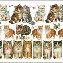 Violette Stickers | Cats