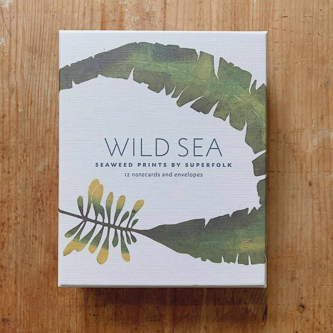 wild sea notecards cover shot top view laydown on wooden background