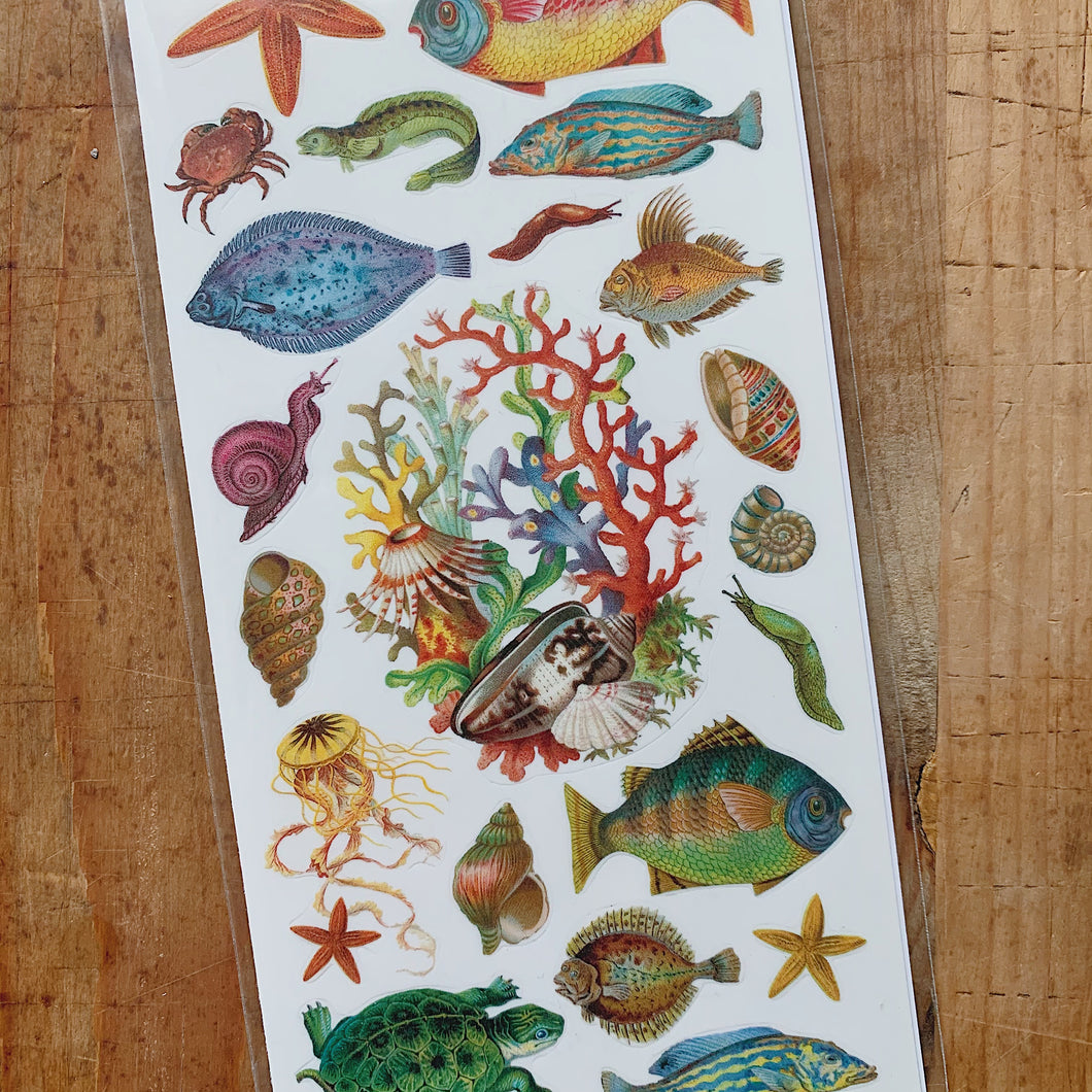 close up overhead view of fish, shell and coral stickers