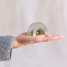 diagonal view of mini slinky toy in hand for scale