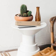 Load image into Gallery viewer, Golden coast incense resting on a small table next to a potted cactus.