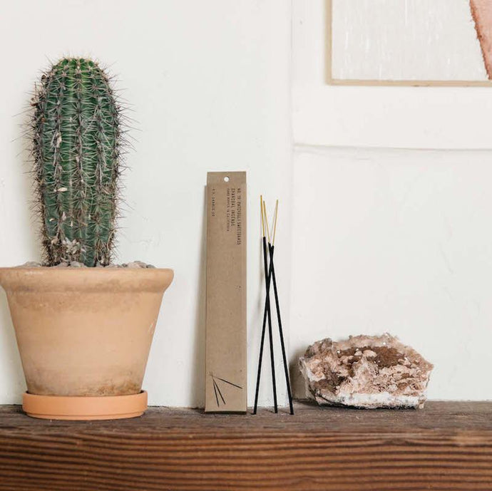 Patchouli sweetgrass incense leaning against a wall next to a potted cactus.