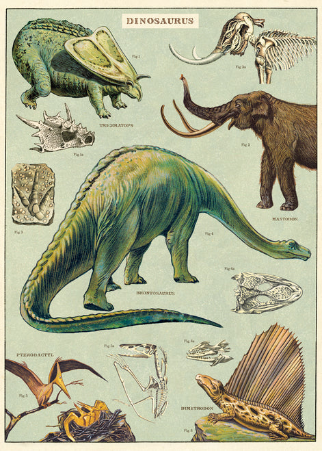 This print features reproductions of vintage dinosaurs.