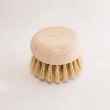 body brush front view from france