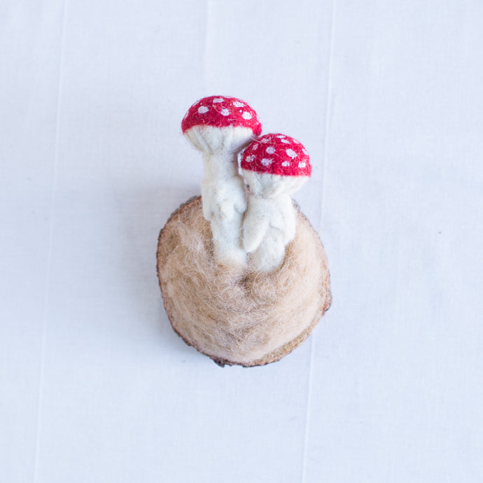 Mushroom Mount | Brown + Red