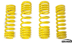 570S Novitech Lowering Springs