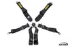 Schroth GT3 6-point Racing Harness