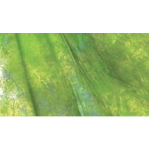 Muslin Multi Green Backdrop Material 3x6m - Broadcast Lighting