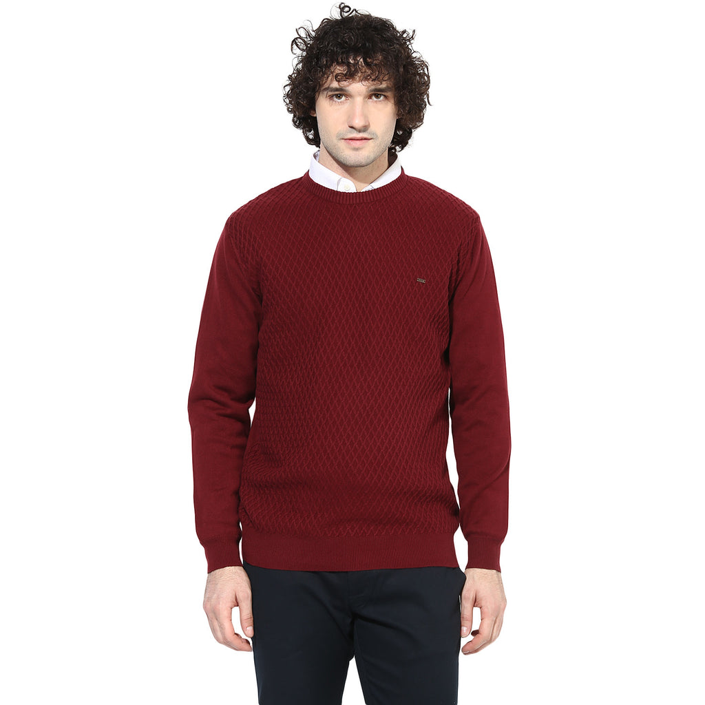 Turtle Pullover
