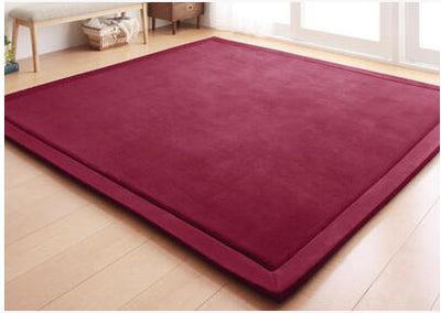 2CM Thick Coral Fleece Mat Carpet