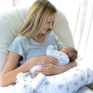 Maternity & Nursing Cushions