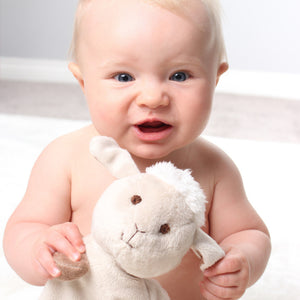 Soft Breathable Baby Sleep Comforter and Teether