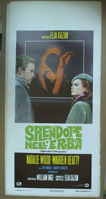 Locandina Splendore Nell'erba 1979  Nathalie Wood , Warren Beatty
