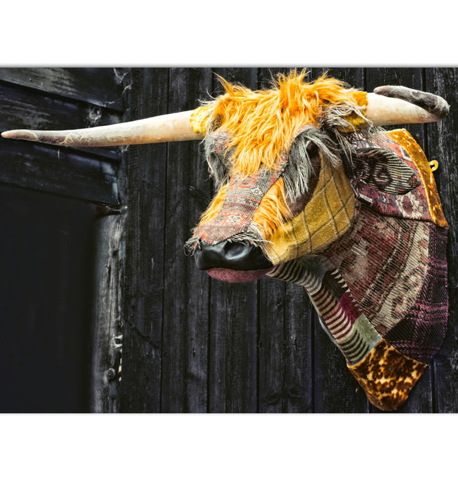 Textile Taxidermy Dougal the Highland Bull