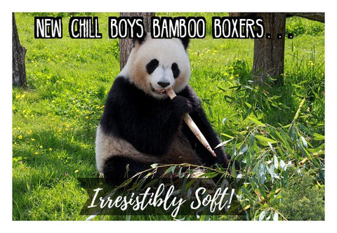 Chill Boys Bamboo Boxers Panda in Picture