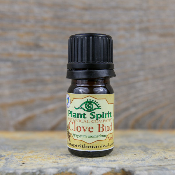 Clove Bud Essential Oil - 5 ml