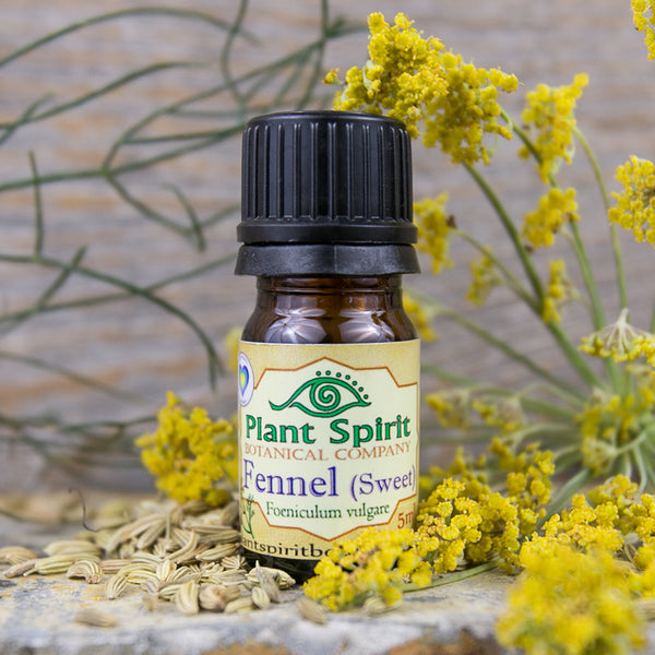 Fennel Essential Oil - 5 ml