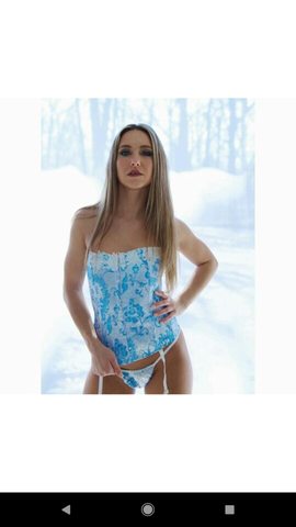 Ivory and Blue Jacquard Corset and Panty